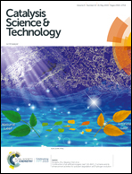 "Novozym 435: the ""perfect"" lipase immobilized biocatalyst"