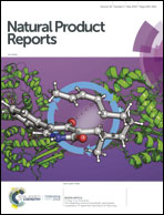 Synergy and antagonism in natural product extracts: when 1 +
