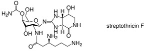 Biosynthesis of the carbamoylated d-gulosamine moiety of streptothricins: involvement of a guanidino-N-glycosyltransferase and an N-acetyl-d-gulosamine deacetylase