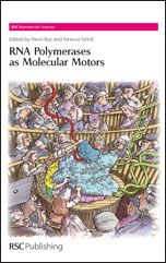 RNA Polymerases as Molecular Motors