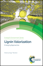 Lignin Valorization: Emerging Approaches