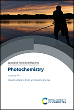 Photochemistry: Volume 48