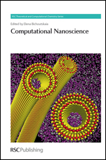 Computational Nanoscience