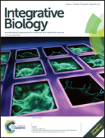 Journal cover: Integrative Biology